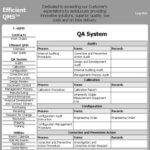 Paperless Efficient QMS™